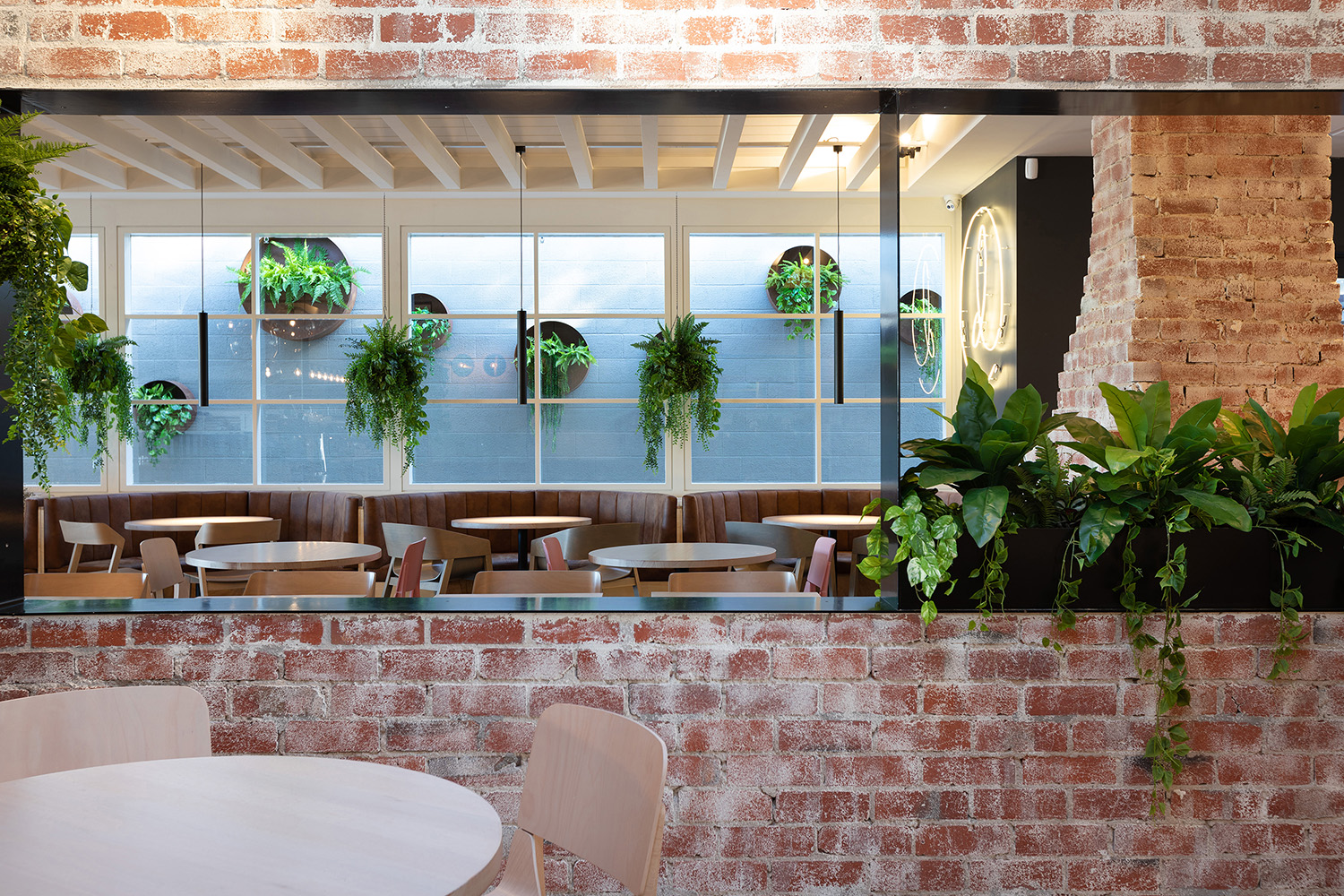 Daydreamers - Beaconsfield, Victoria