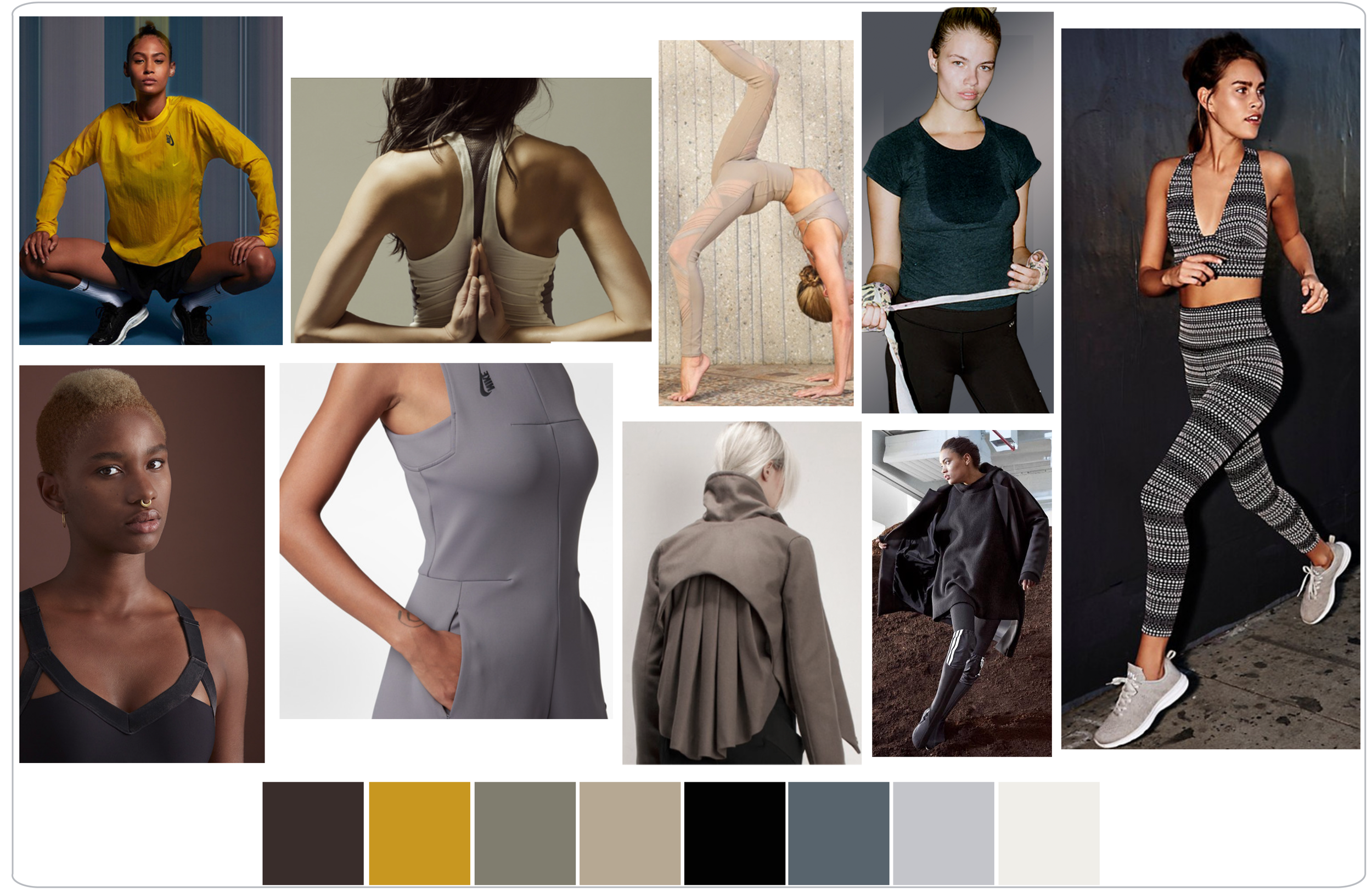 fall 2019 color research-03.png