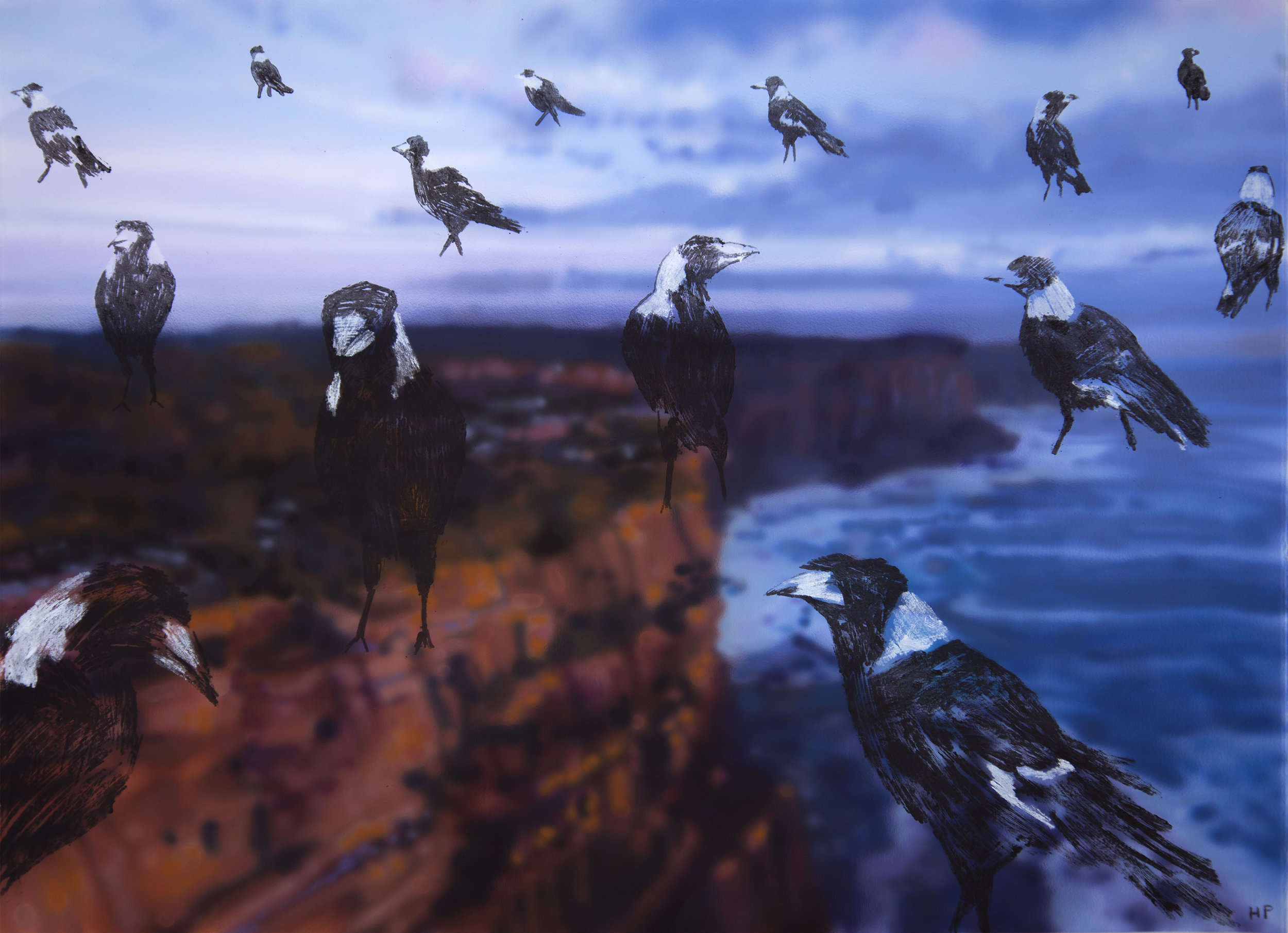 MAGPIE SEASON, NORTH HEAD