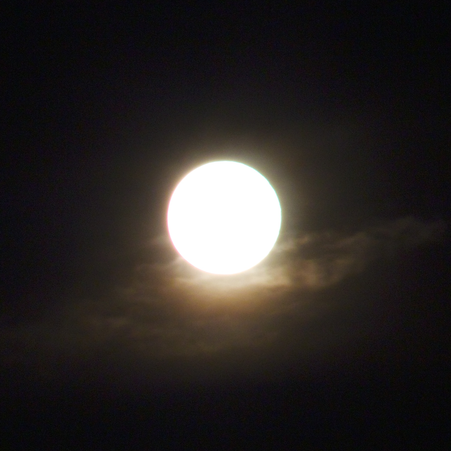 """""""Supermoon"""" 2013. Overexposed for effect."""