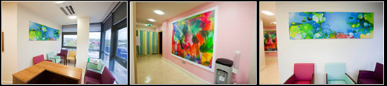 The Cork University Maternity Hospital is a newly constructed award winning building with curving facades and lots of natural light. Three of O'Mahony's most recent large scale digital colour prints are now permanently installed in the Aisling Suite in the South West wing.
