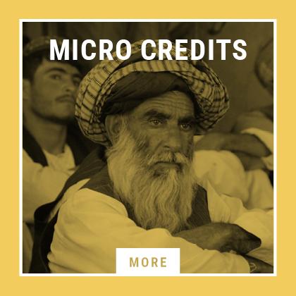 micro_credits_3.png