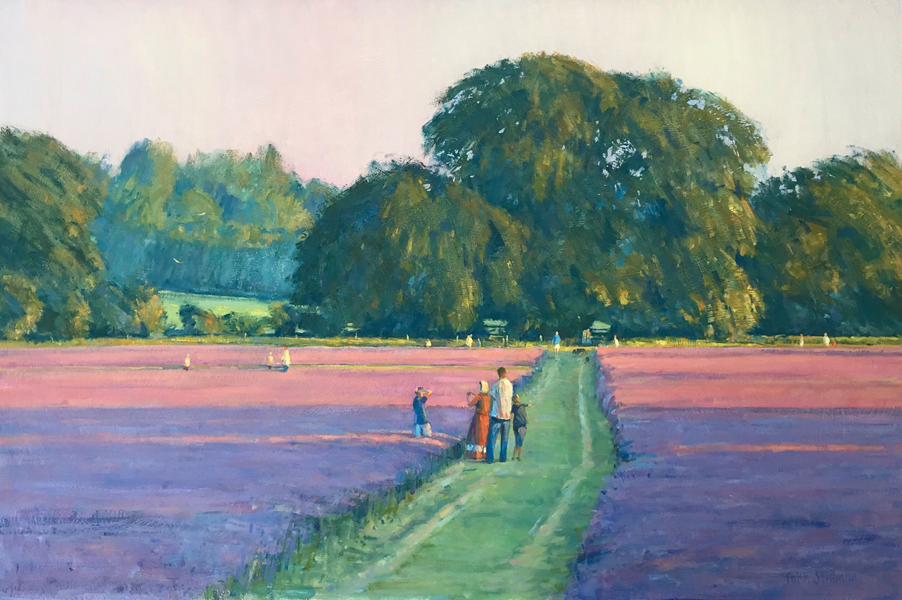 John Stillman - Evening at the Lavender Fields