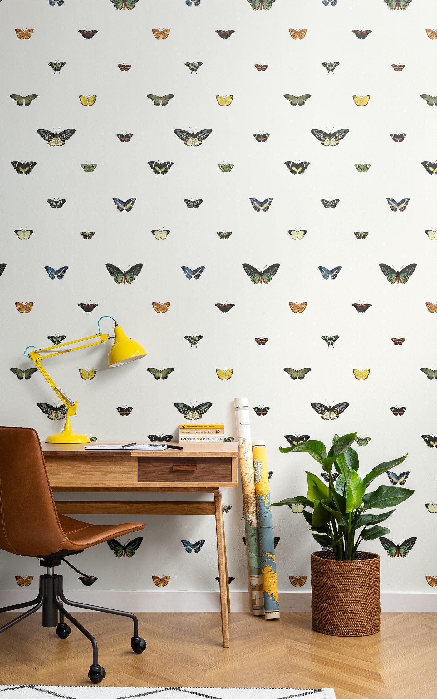 Image (c) Murals Wallpaper