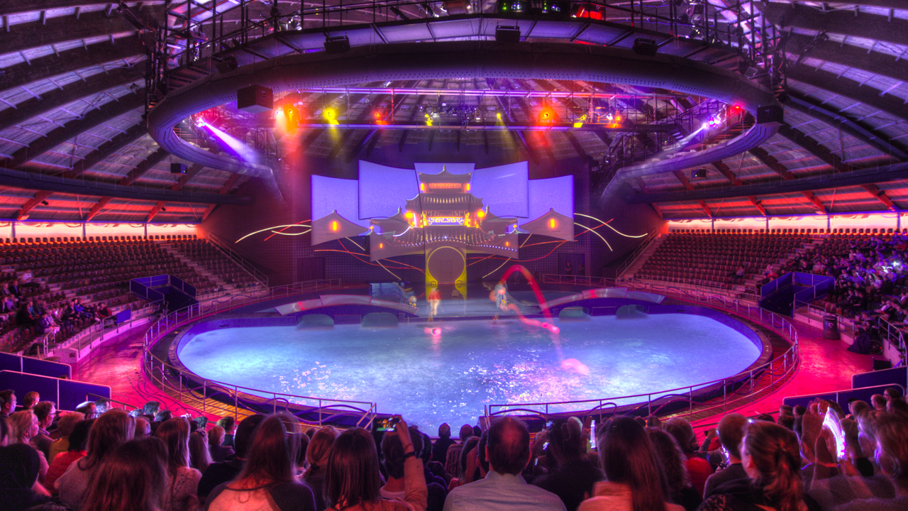DOLFINARIUM DOLPHIN SHOW <strong>| Show and venue at Dolfinarium, the Netherlands</strong>