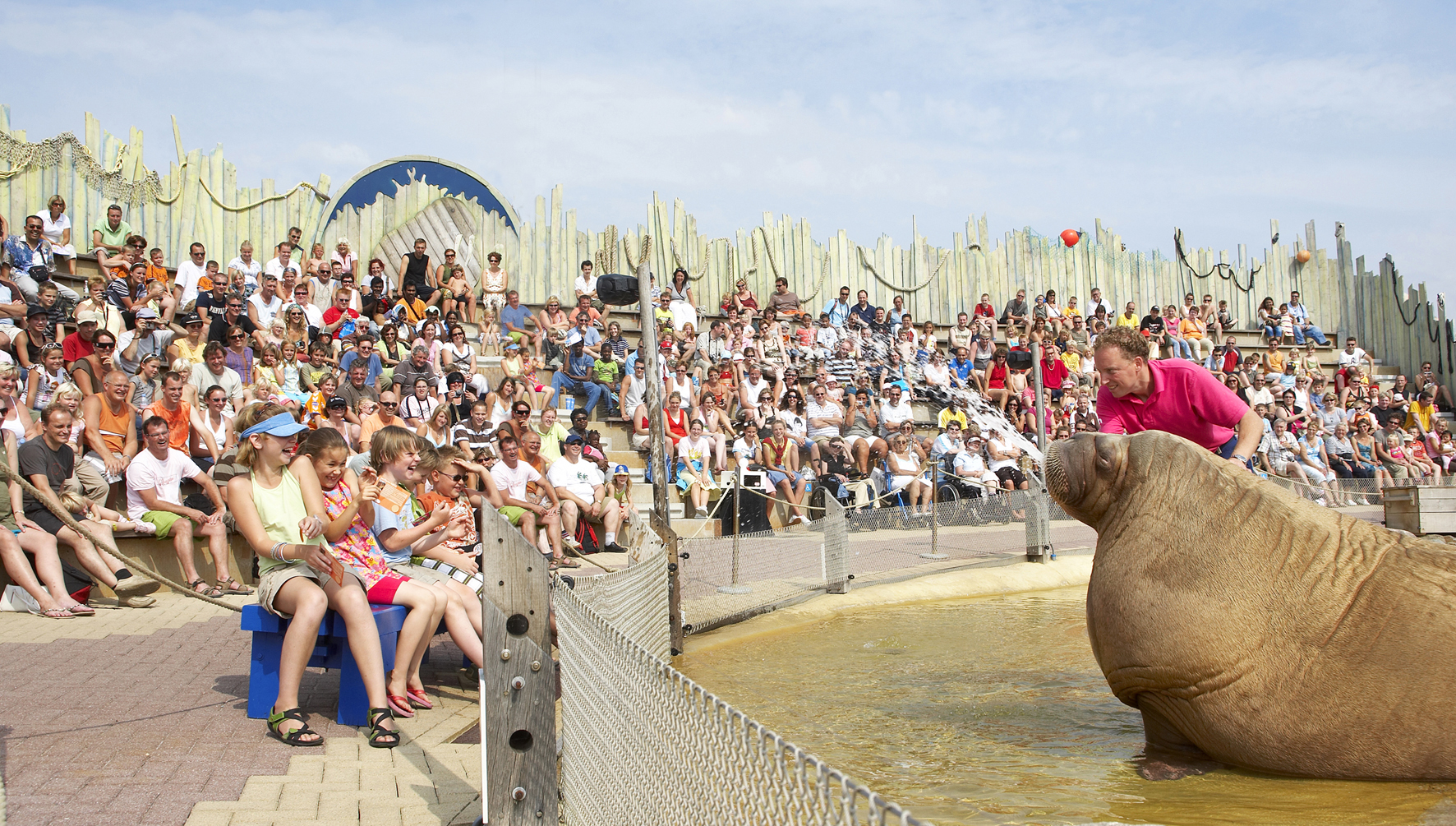 DOLFINARIUM WALRUS SHOW <strong>| Outdoor theater makeover at Dolfinarium, the Netherlands</strong>