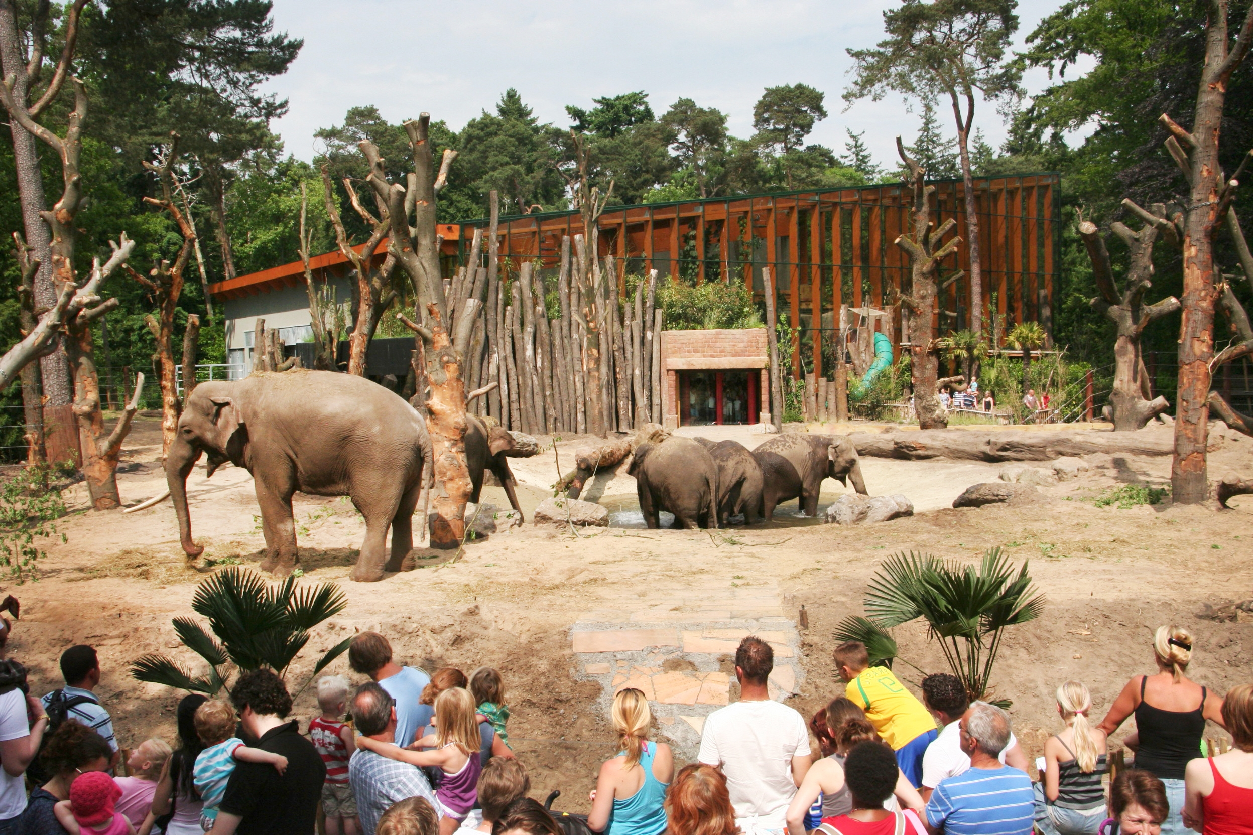 ZOOSITE BENELUX 2012<strong>ZOOSITE Benelux for project Amersfoort Zoo, the Netherlands</strong>