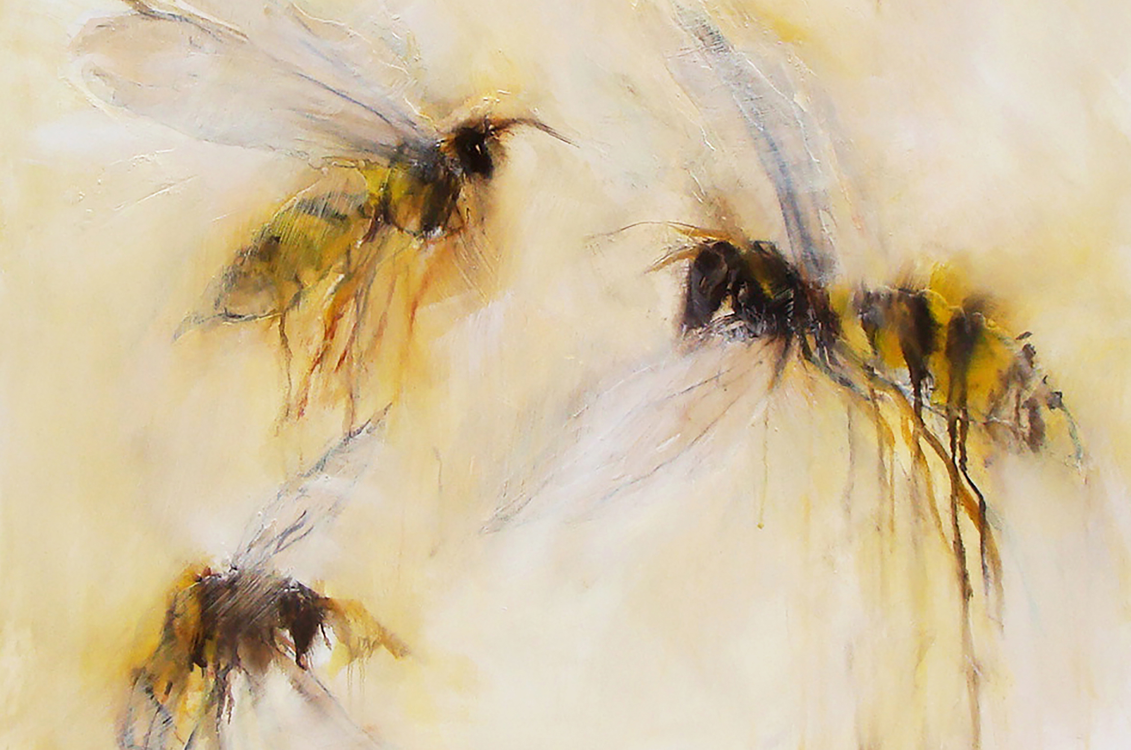 flying beauties - selected works