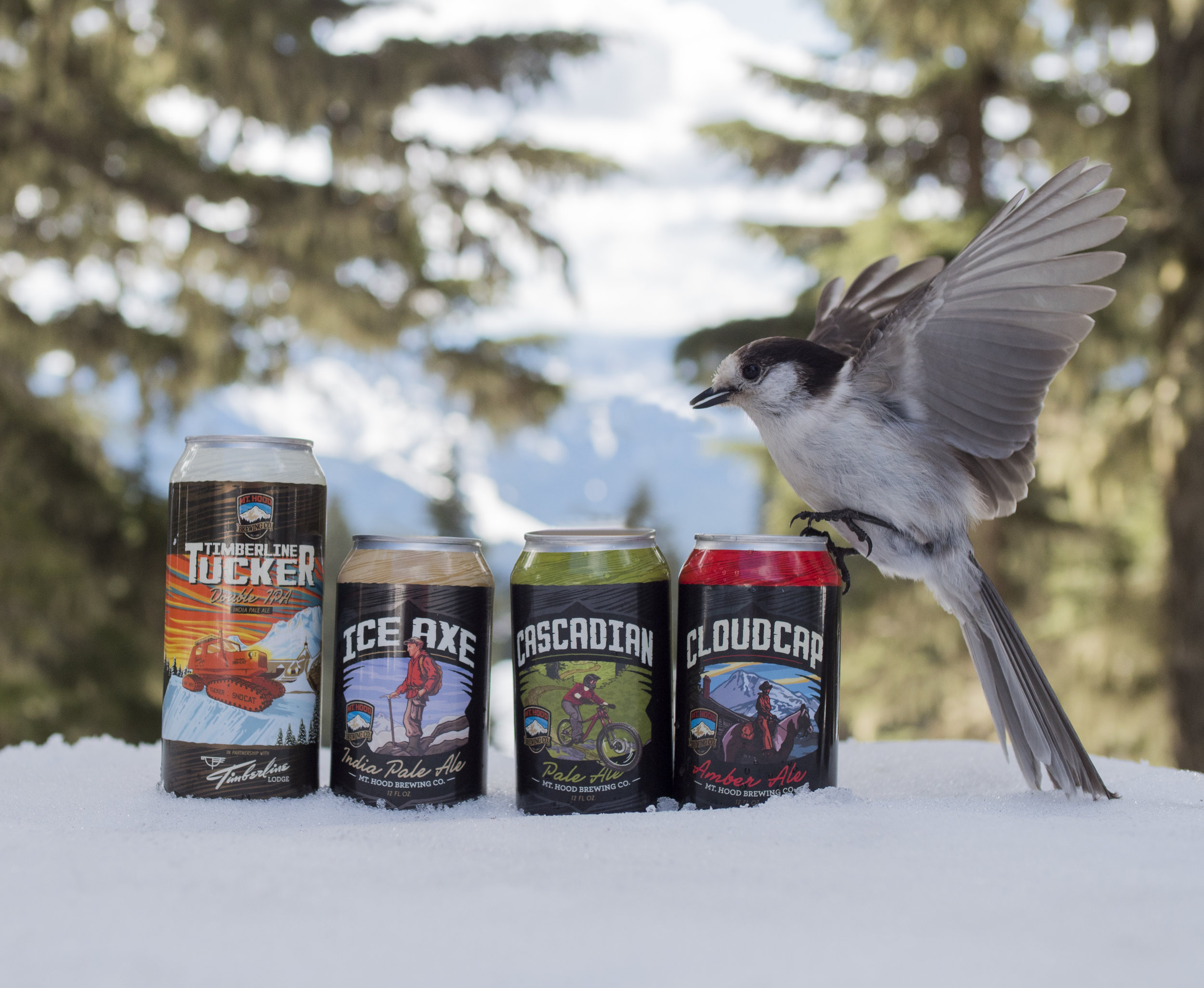 Bird Love MHBC beer.jpg