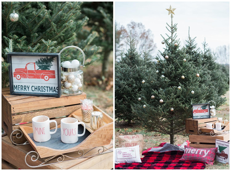 ChristmasTreeFarm_StyledShoot_0018.jpg