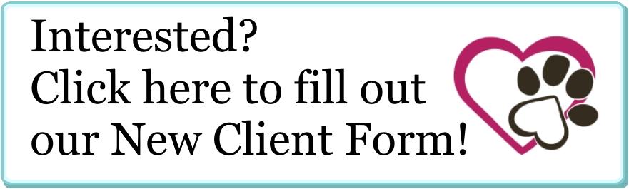 clientportal.jpg