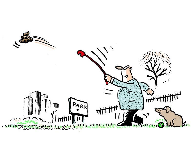 dog_throw.jpg