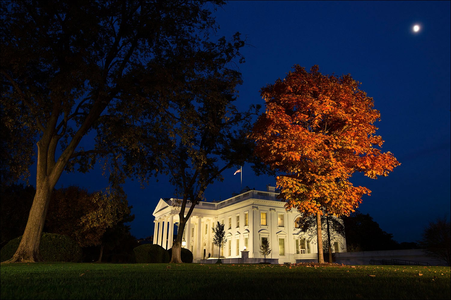 Fall foliage illuminated by television lighting on the North Lawn of the White House, Nov. 8, 2016. (Official White House Photo by Chuck Kennedy).