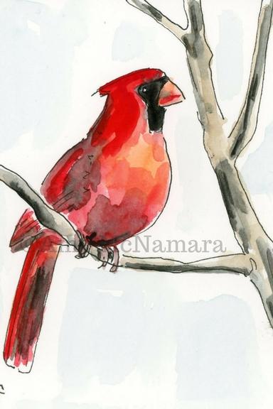 8.cardinal.jpg
