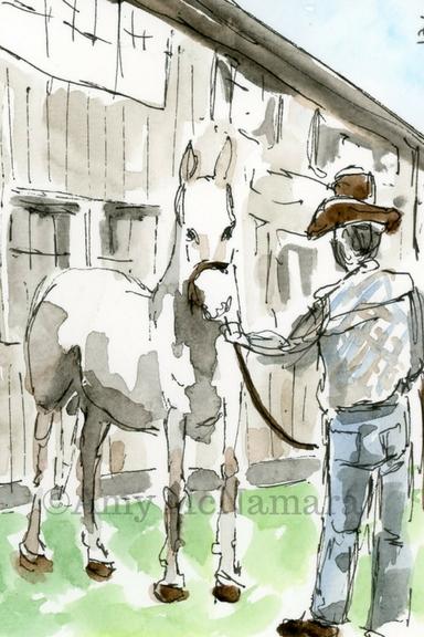 12.horse.jpg