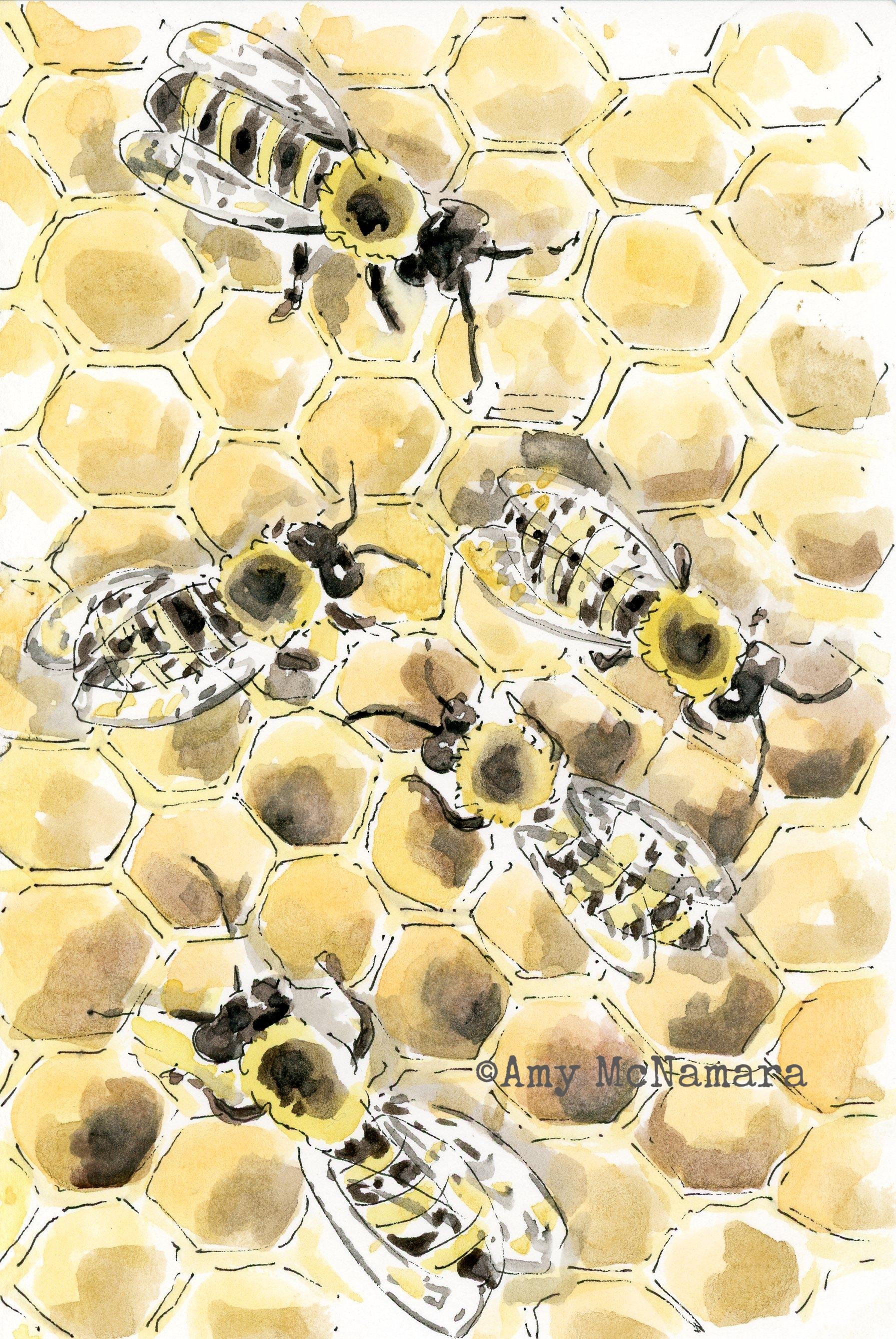 240.bees.jpg