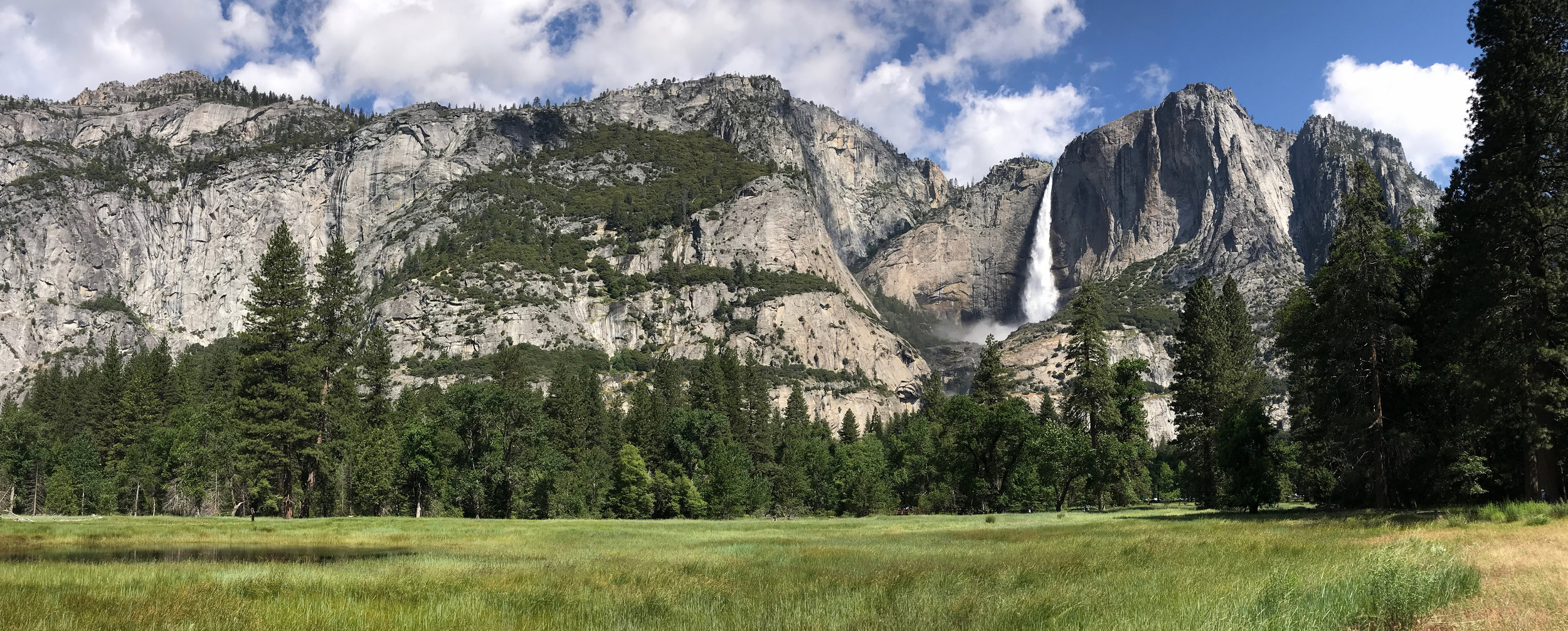 """ It is easier to feel than to realize, or in any way explain, Yosemite grandeur. The magnitude of the rocks and trees and streams are so delicately harmonized, they are mostly hidden. ""  —John Muir"