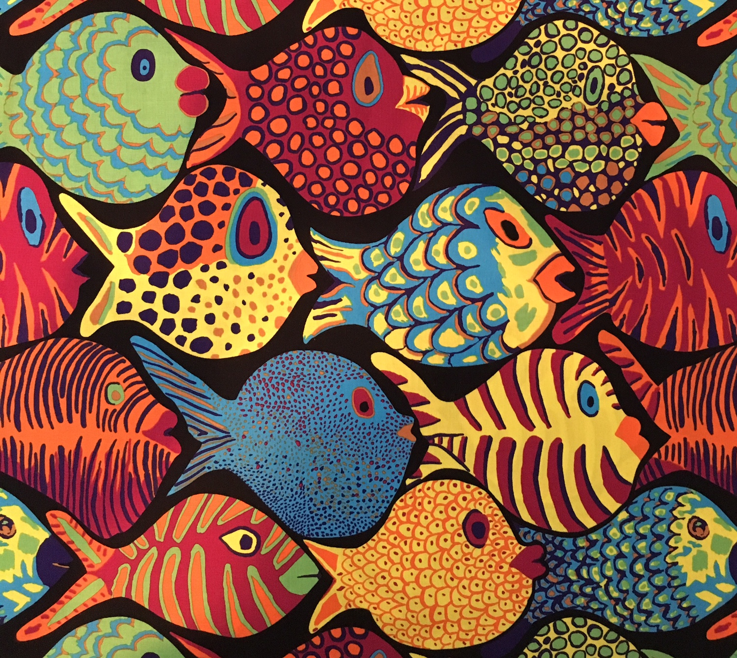 All the fishes....  (they are so cool!).