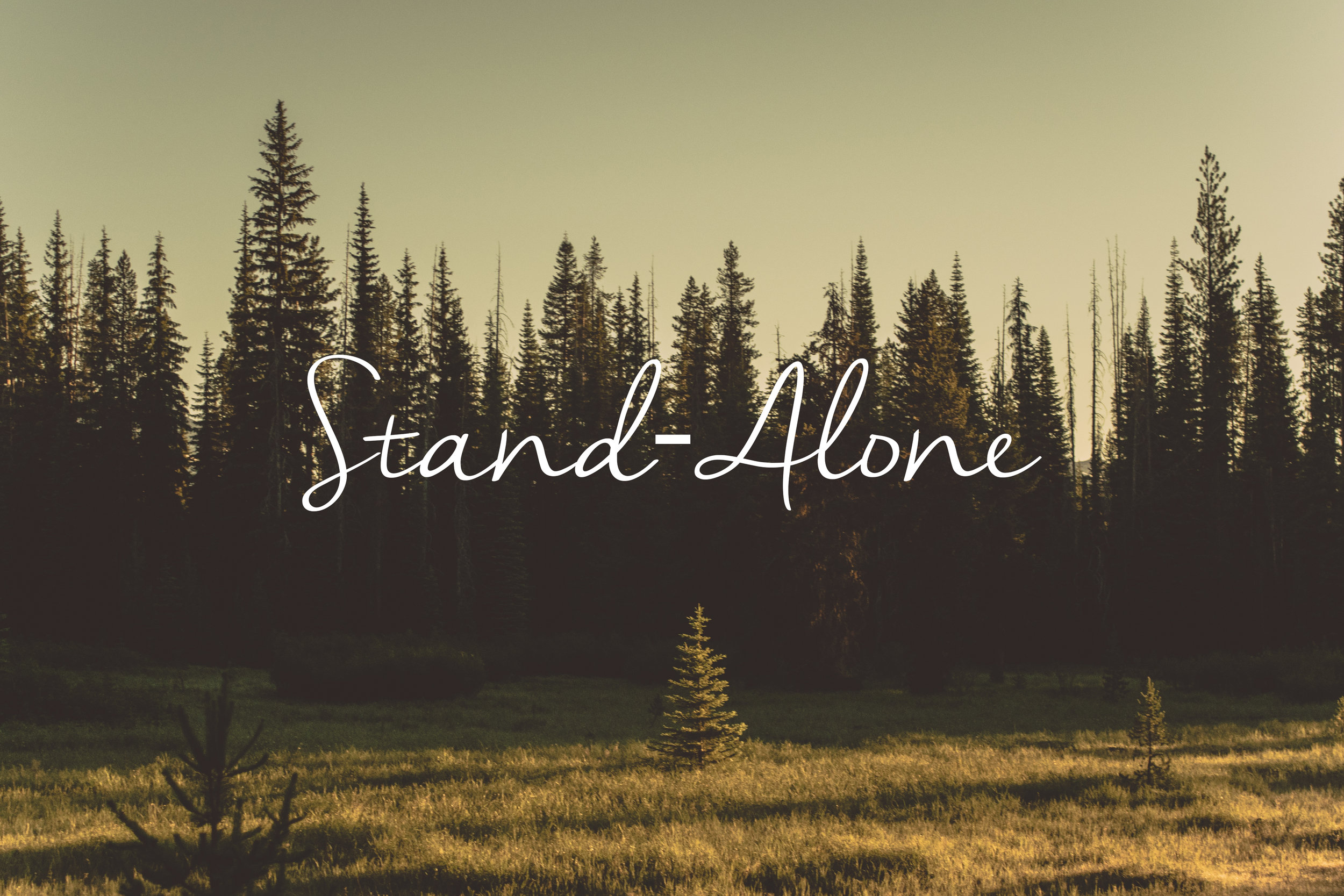 Stand-alone.jpg