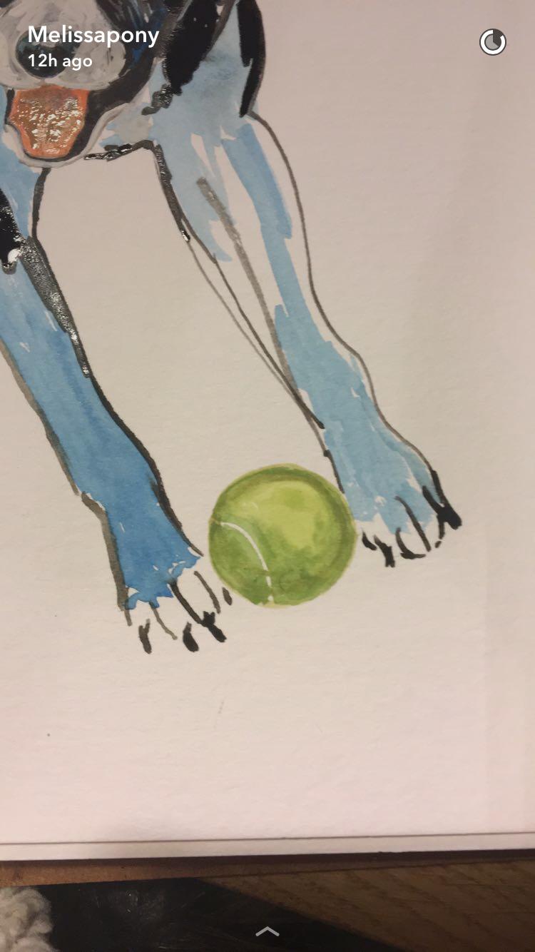 Tennis ball lover