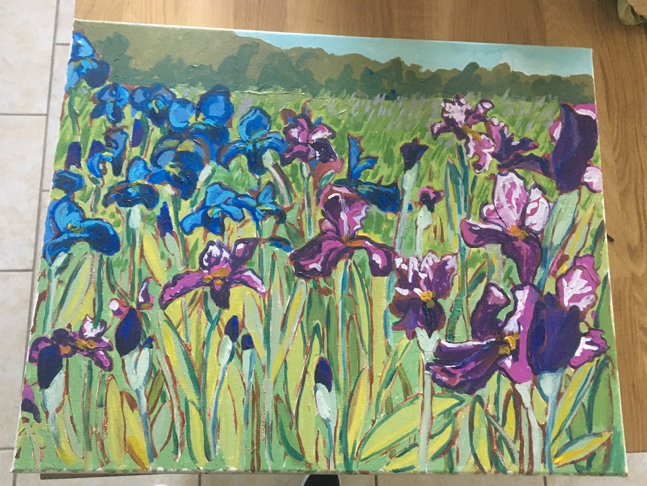 irises in progress 2.JPG