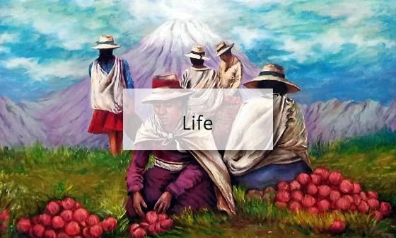 life.jpg