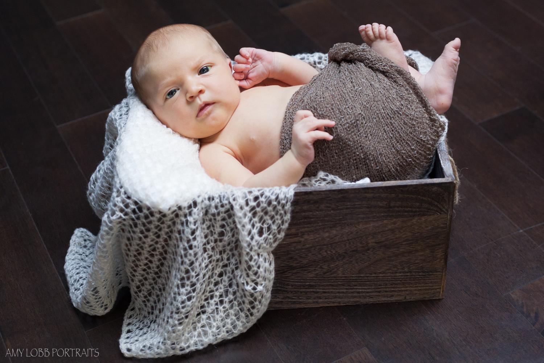 isabella-newborn-by-amy-lobb-7.jpg