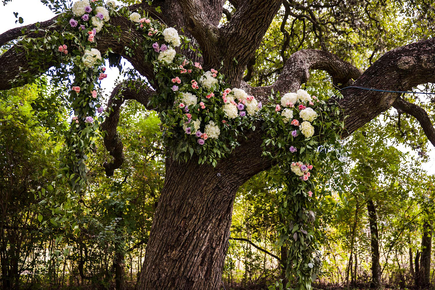 winfield-inn-wedding-austin.6.jpg