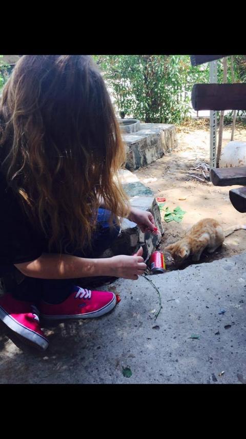 """A homeless cat"" Image credit: Irena Louzon"