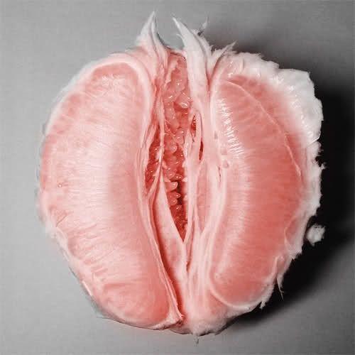 grapefruit-vagina.jpg
