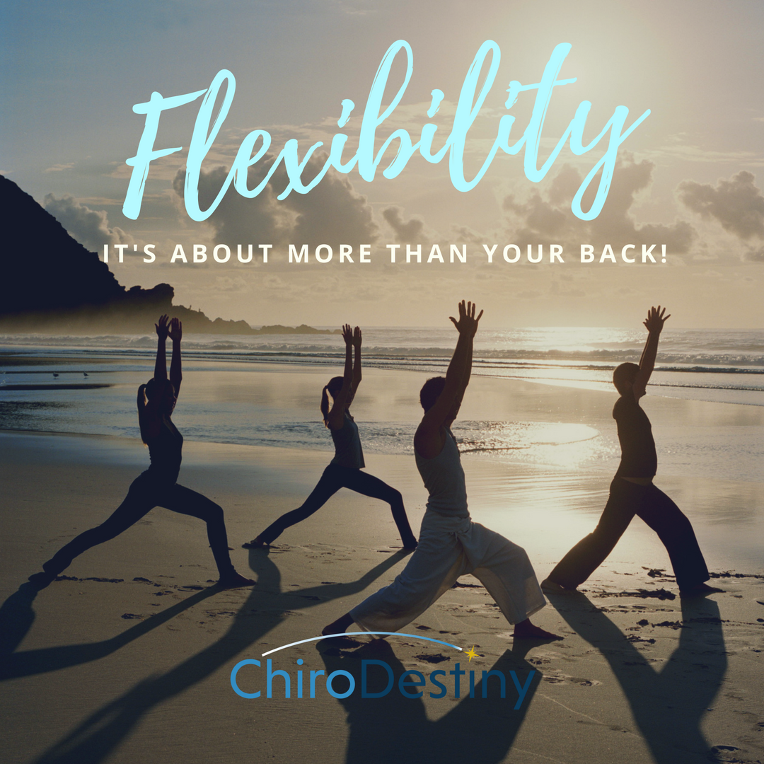 chirodestiny-flexibility.png