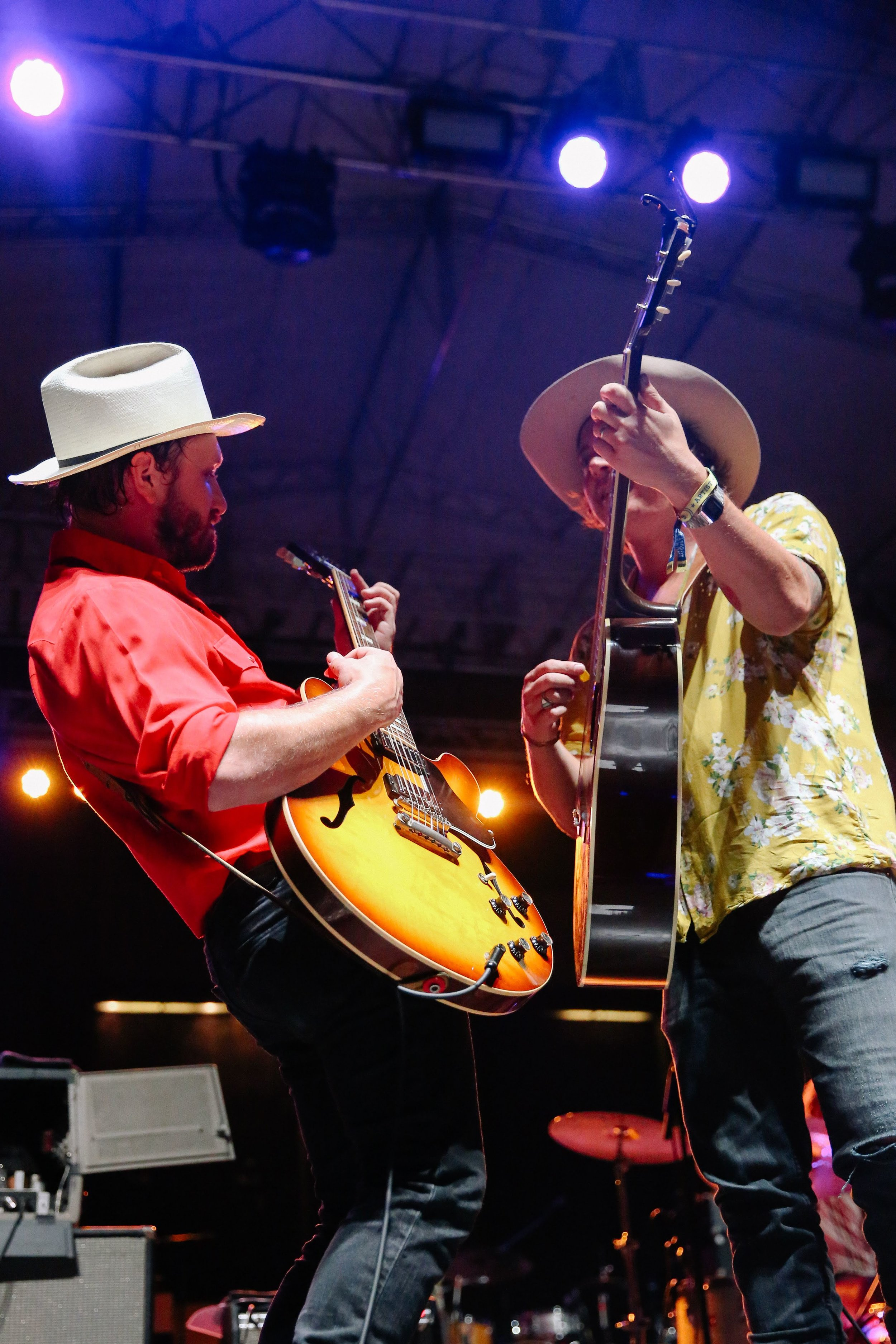TheWildFeathers_LOTG_TN2018-12.jpg