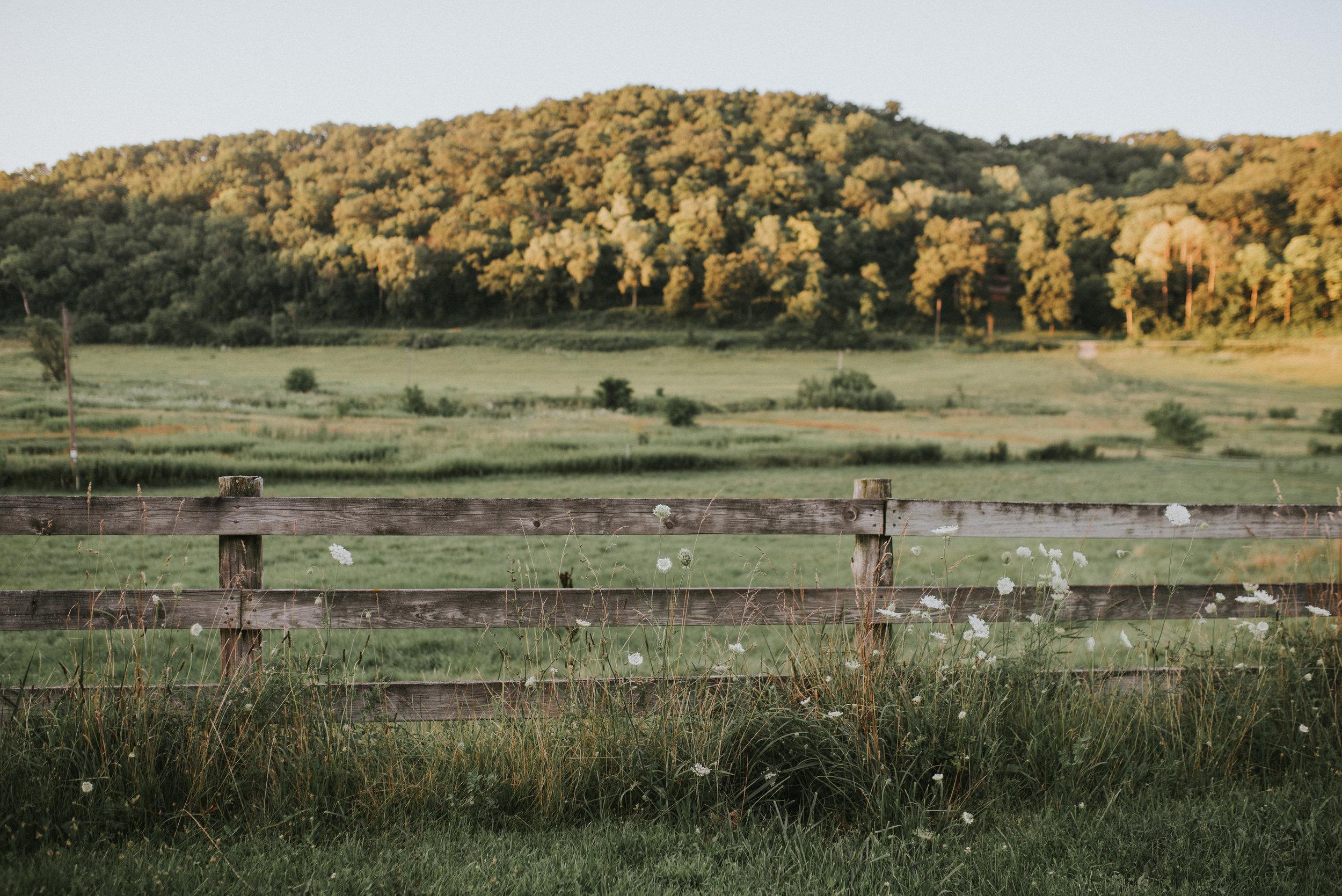 Cate_Family_Farm_Wisconsin-118.jpg