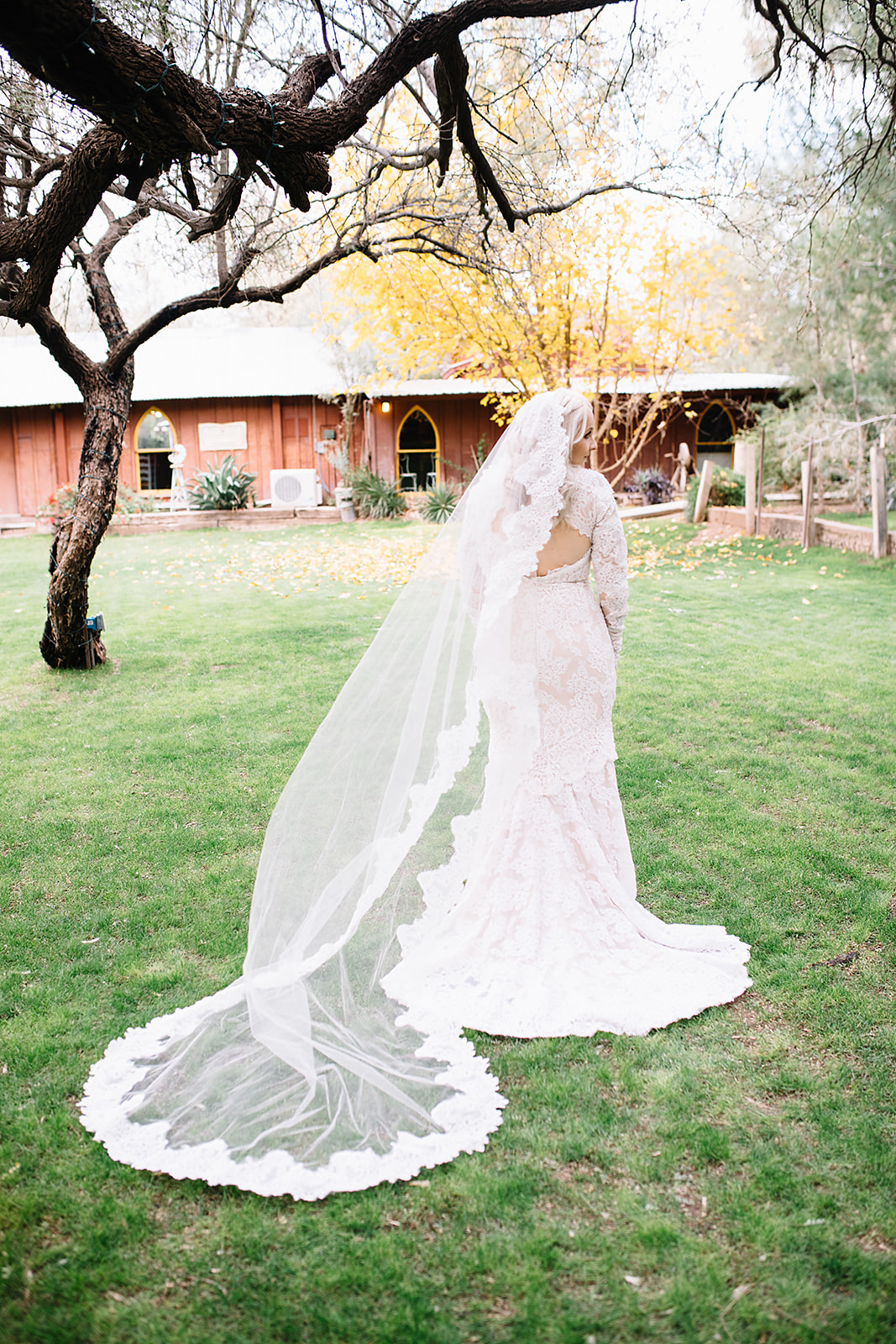 arizonaweddingphotographer5.jpg