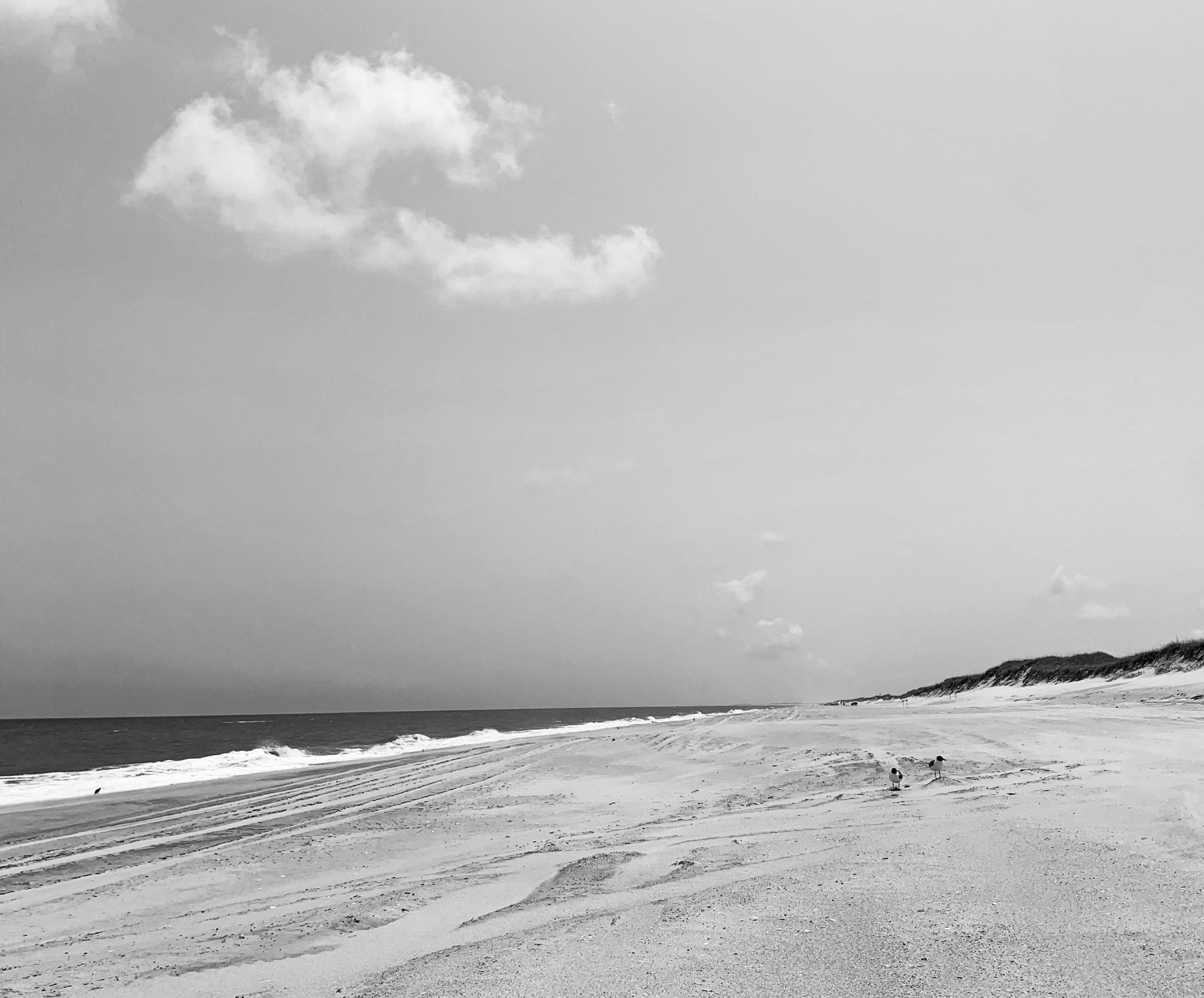 [Cape Hatteras National Seashore]