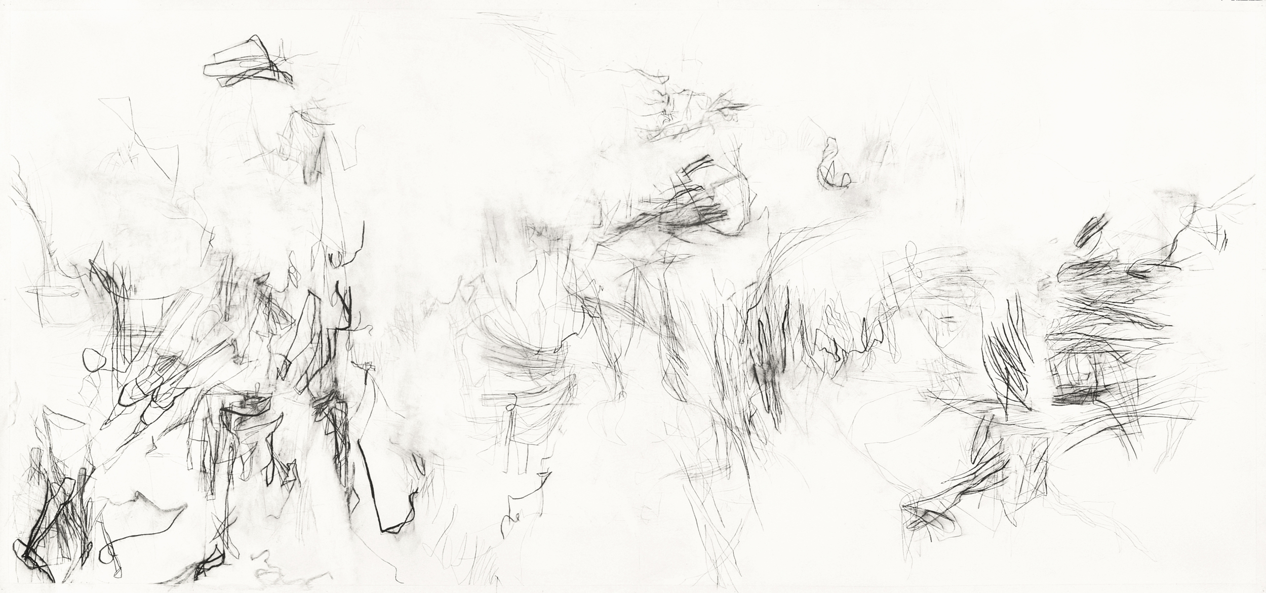 Untitled (L.00.1), 2000 charcoal, rabbit skin glue on paper 108 x 48 inches Collection: The Bryant Group