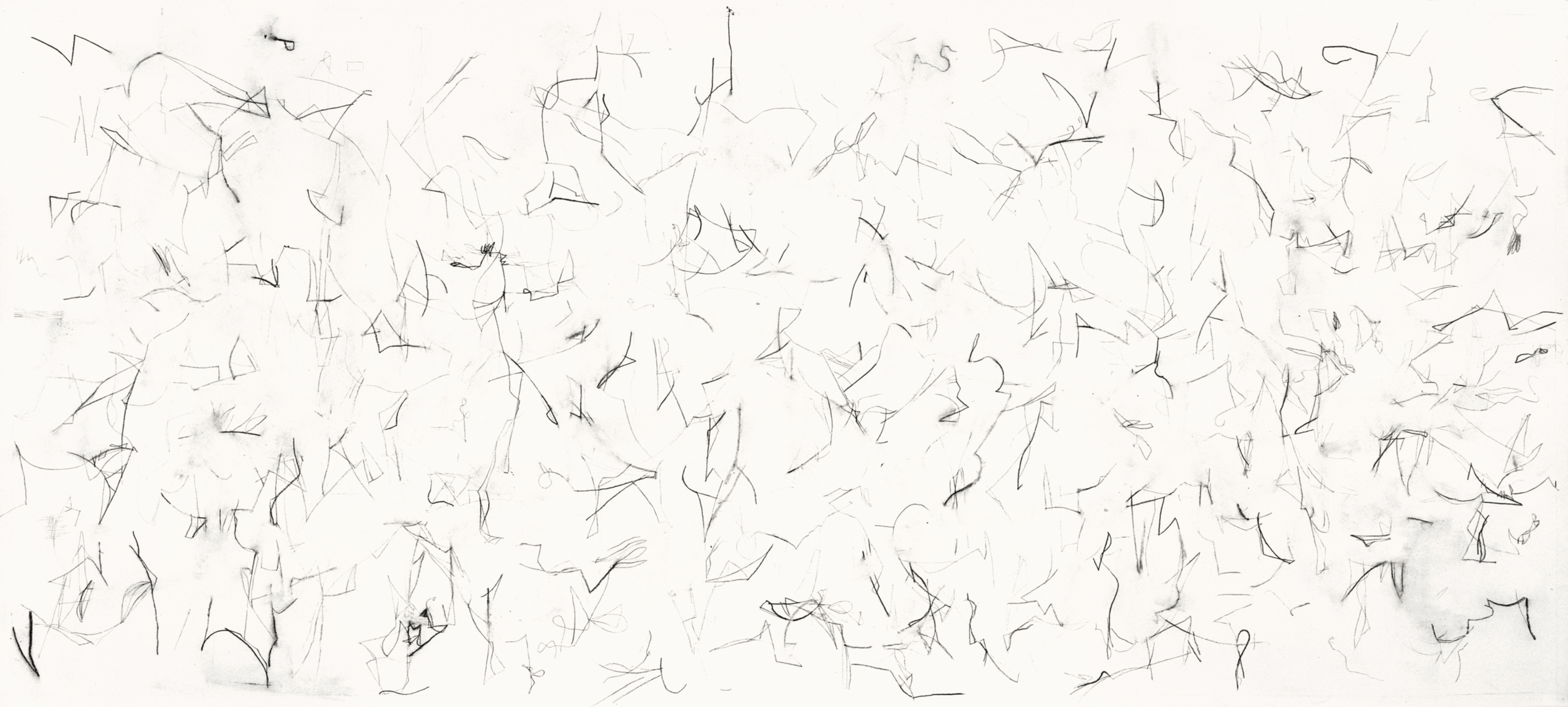 Untitled (L.99.1), 1999 charcoal, rabbit skin glue on paper ca. 48 x 107 inches Collection: Sarah-Ann and Werner H. Kramarsky