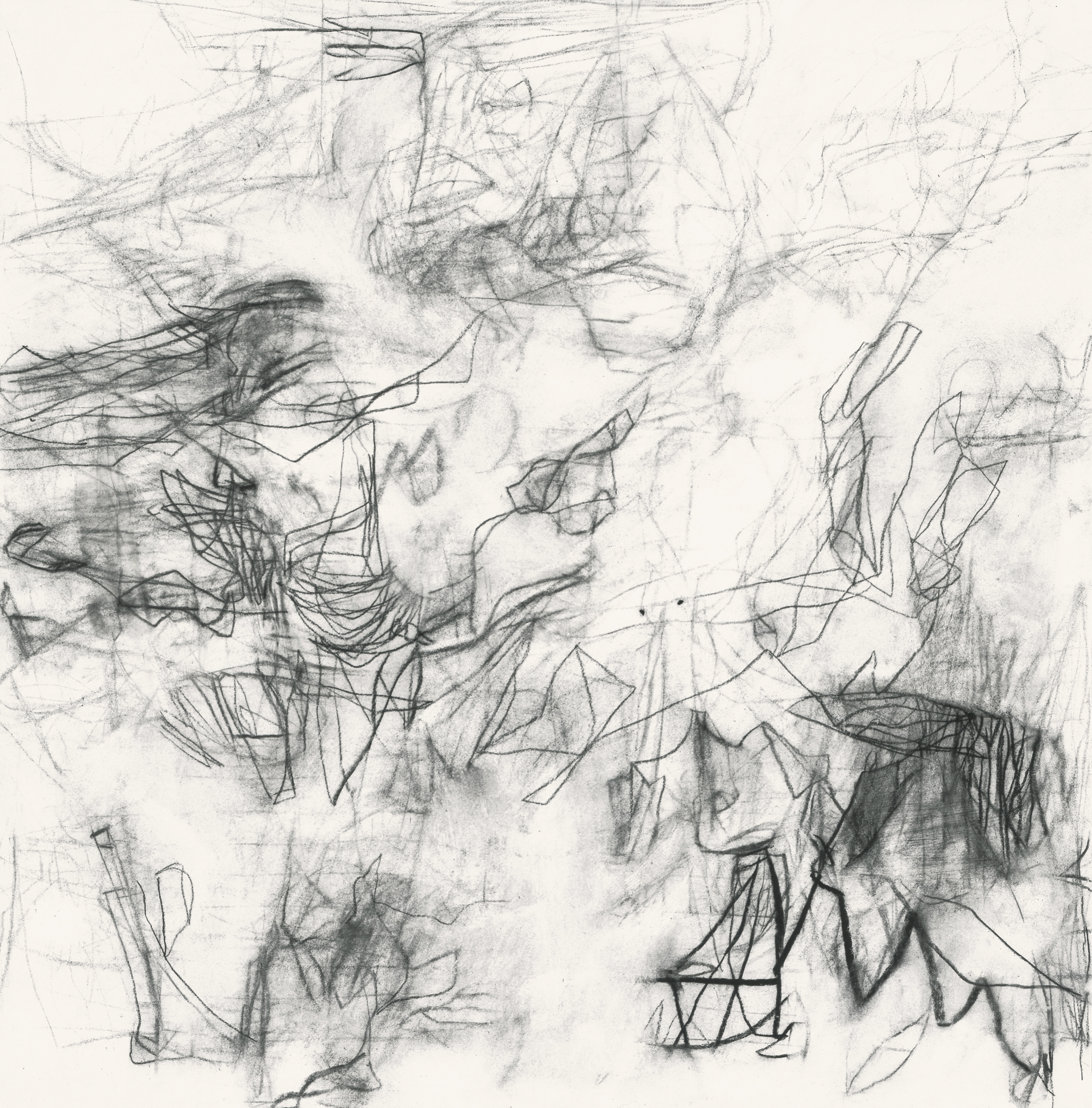 Untitled (sc.00.22), 2000 charcoal, rabbit skin glue on paper 18 3/8 x 18 inches Collection: The Bryant Group