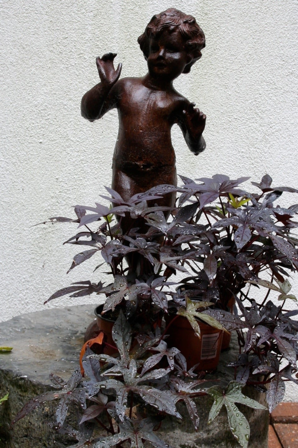 our small figure in garden.jpg