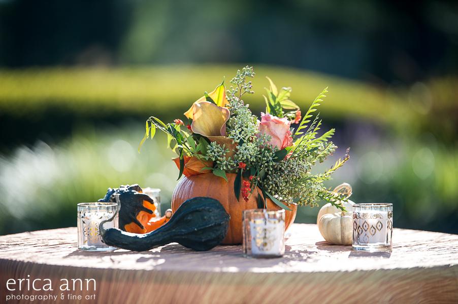 EricaAnnPhotography_GeraniumLake_Autumn-109.jpg