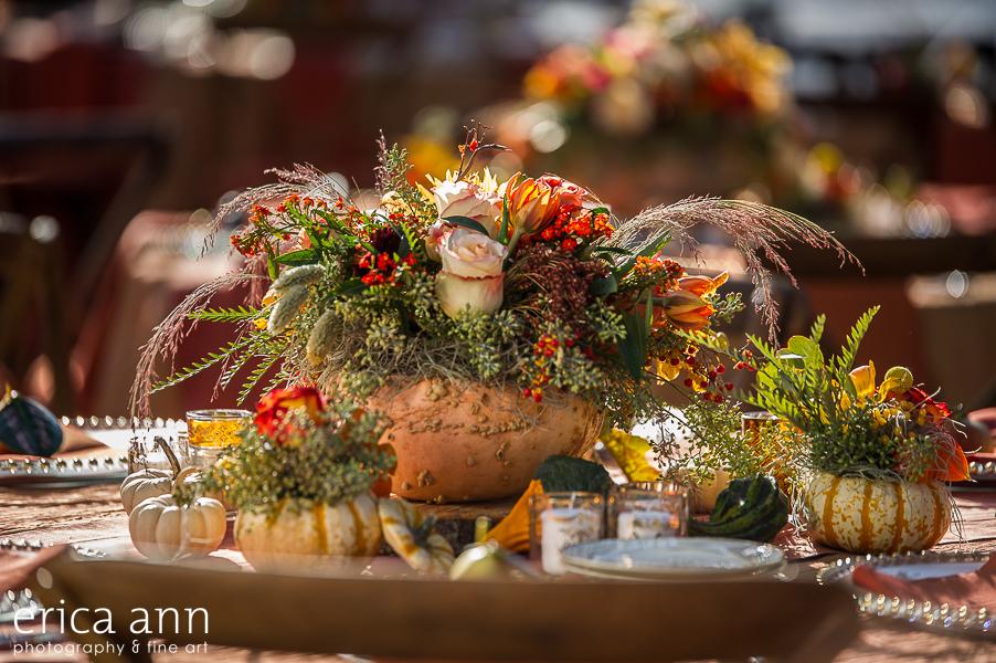 EricaAnnPhotography_GeraniumLake_Autumn-122.jpg