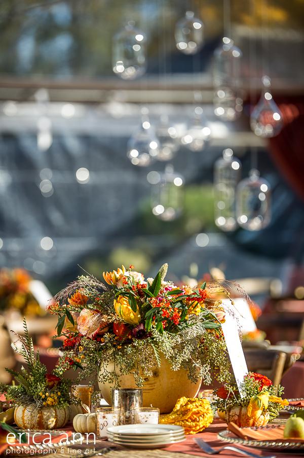EricaAnnPhotography_GeraniumLake_Autumn-144.jpg