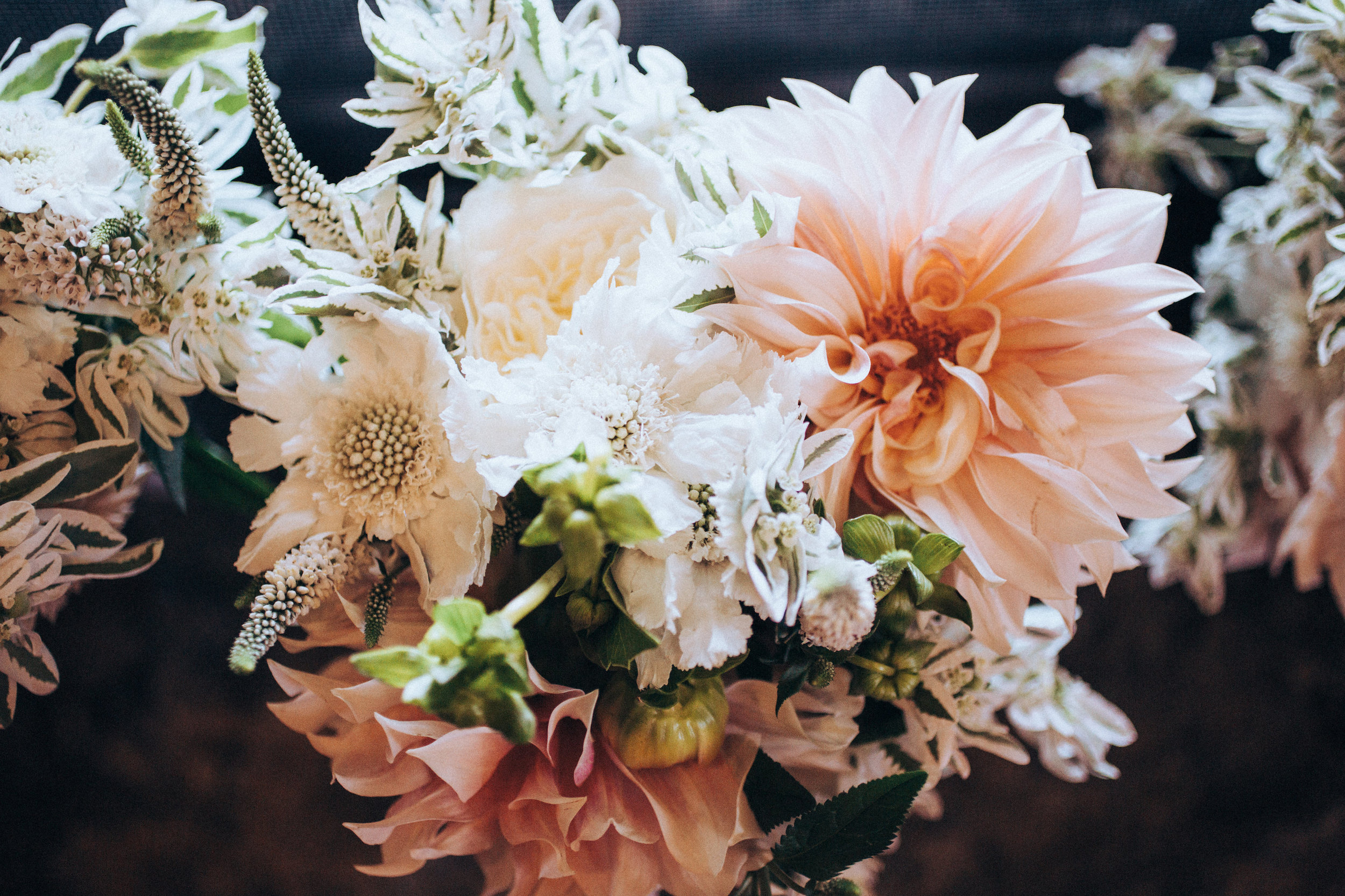 ©annajonesphotography_lisaqin_scottnewman_wedding_026.jpg