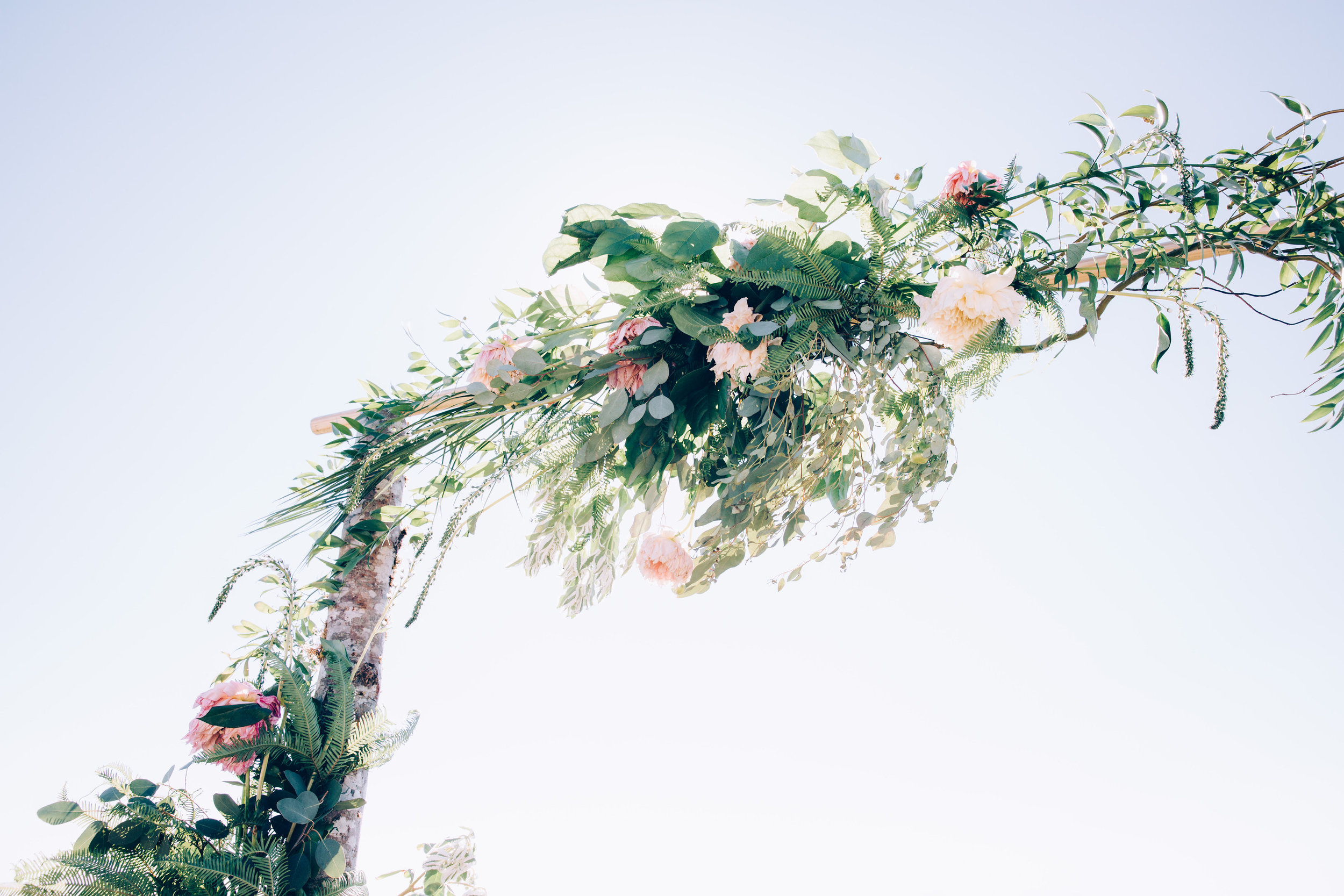 ©annajonesphotography_lisaqin_scottnewman_wedding_237.jpg