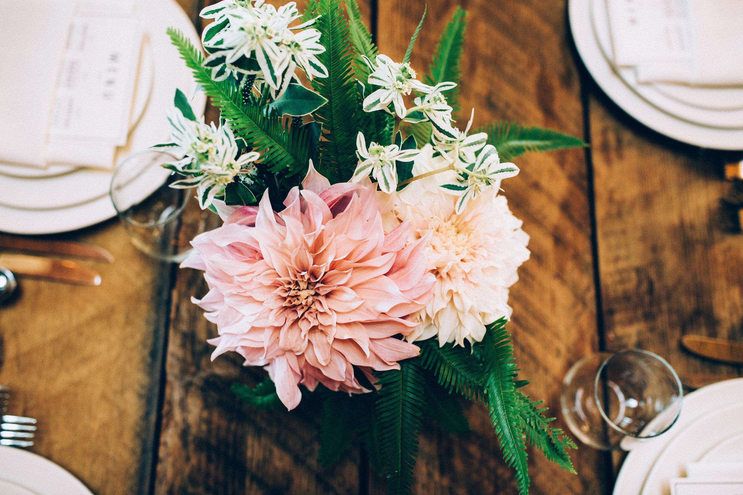 ©annajonesphotography_lisaqin_scottnewman_wedding_472.jpg