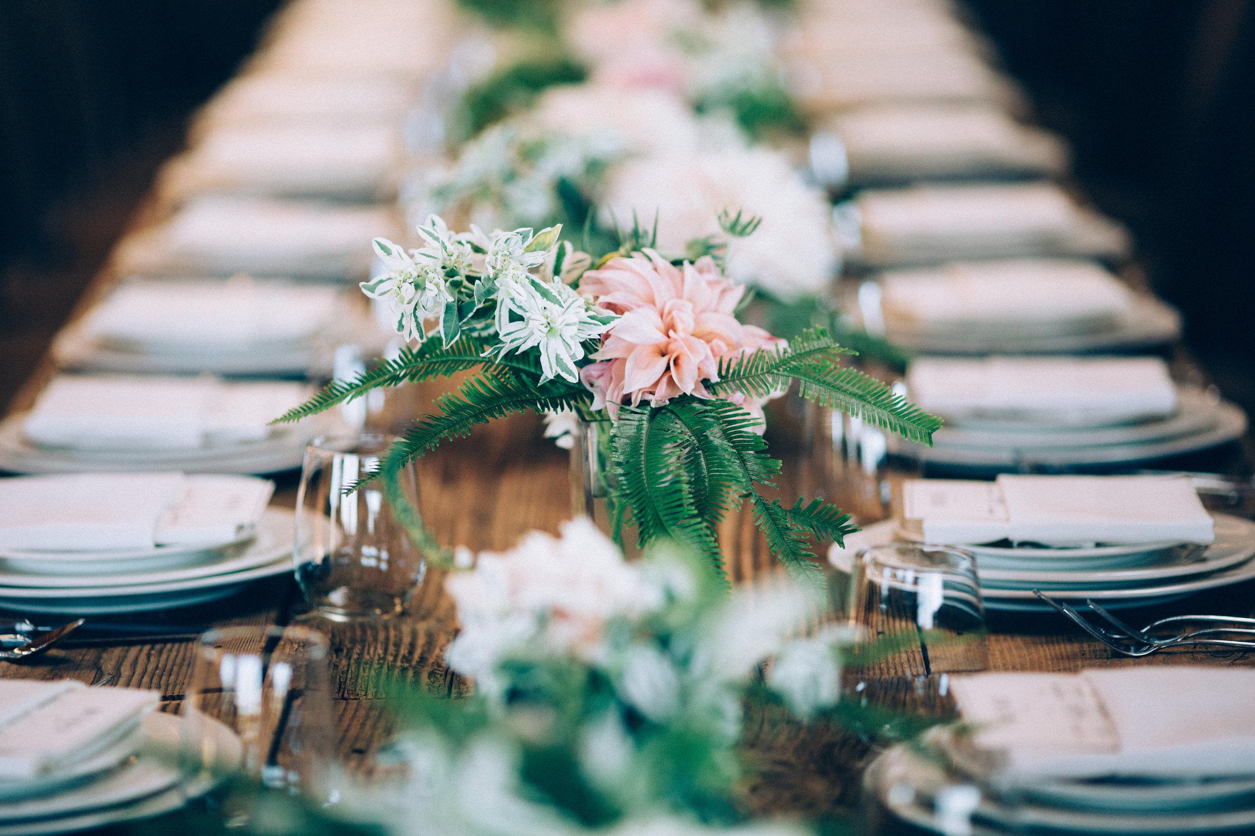 ©annajonesphotography_lisaqin_scottnewman_wedding_477.jpg