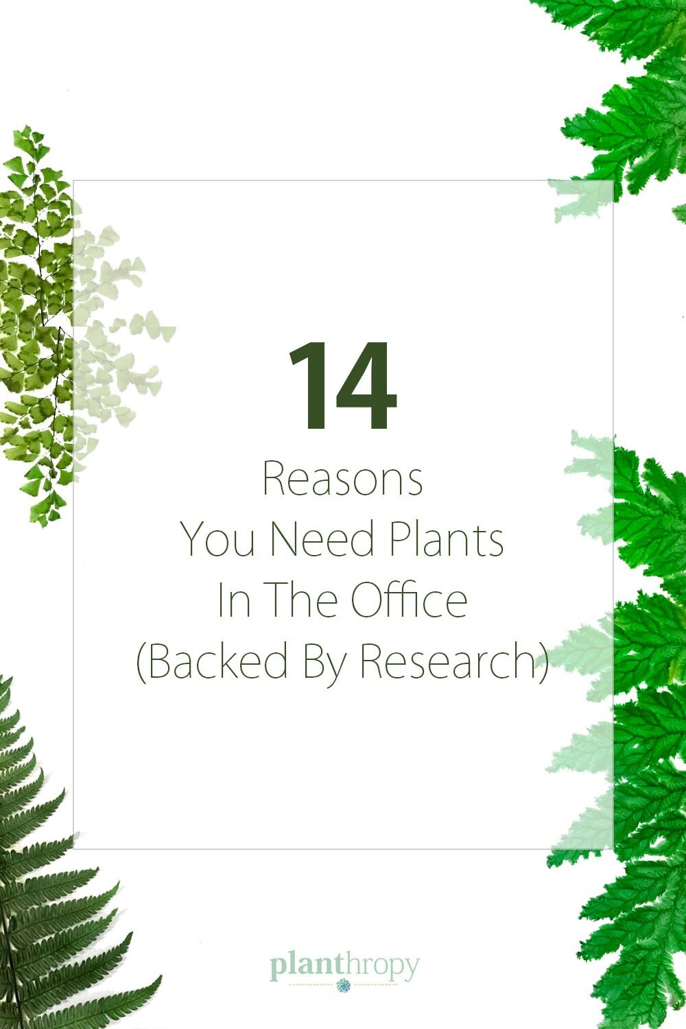 14+Reasons+You+Need+Plants+In+The+Office