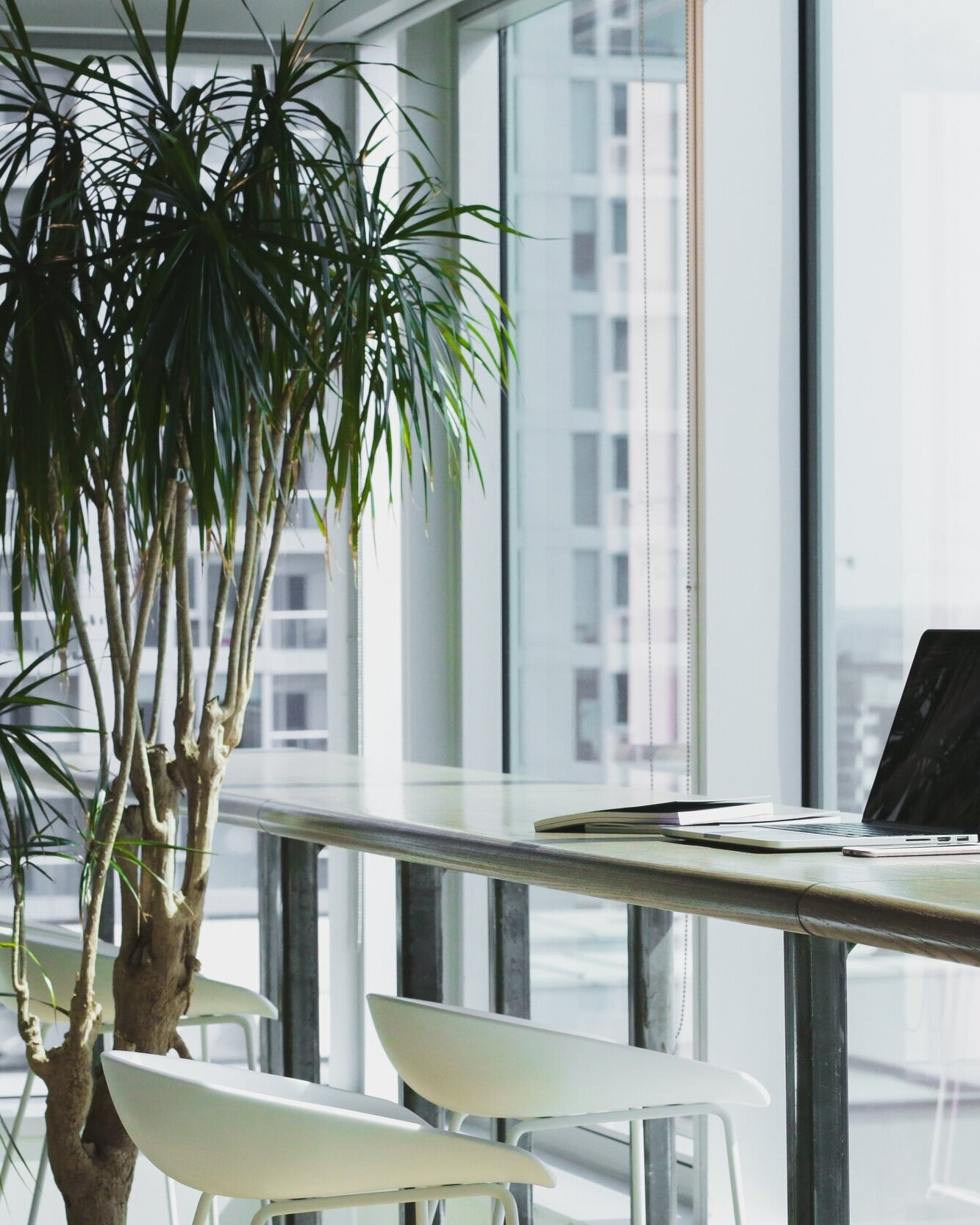 14 Reasons You Need Plants in The Office (Backed By Science)