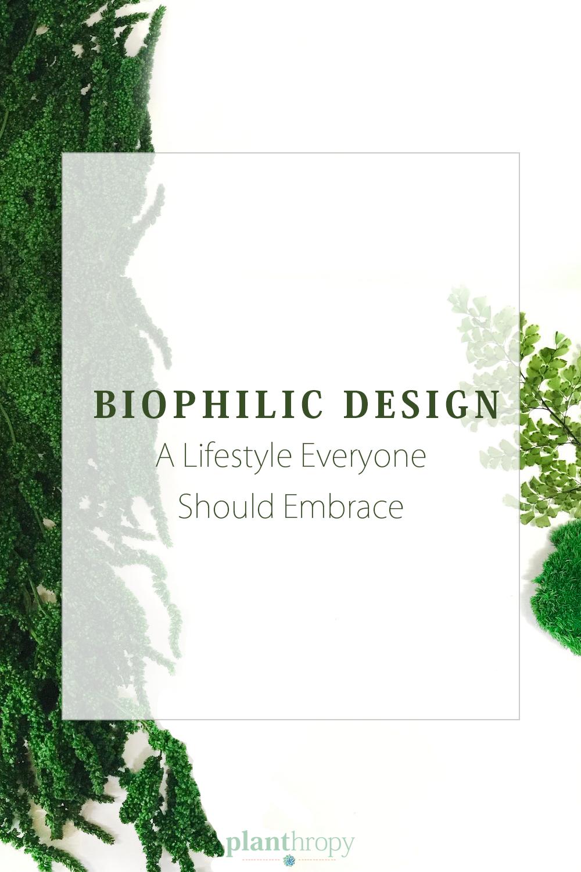 Biophilic Design: A Lifestyle Everyone Should Embrace