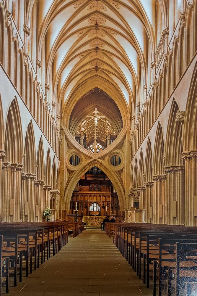 3. David Gardener - Wells Cathedral